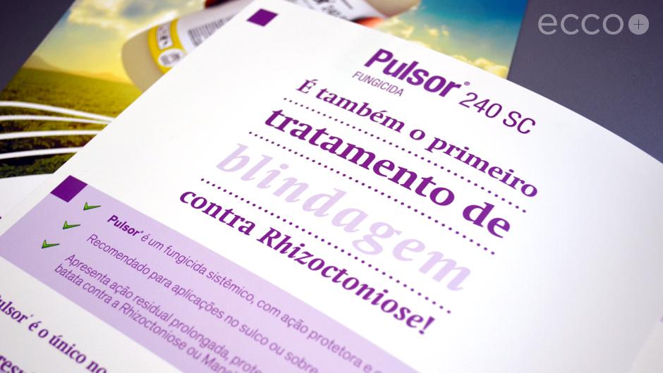 Portfolio_Folheto_Pulsor_2013_003